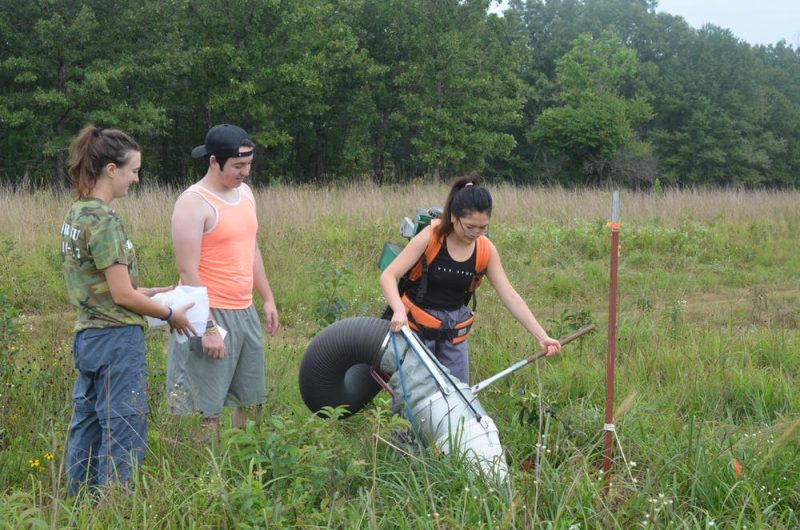 Two young women and a young man in field collecting insects with a large tube.