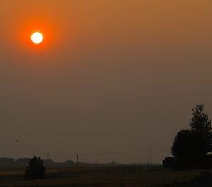 Very orange sun hanging in a smokey sky.