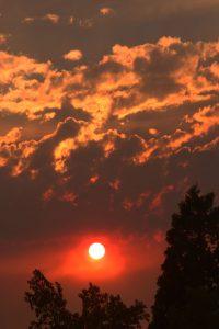 Fiery wildfire sunset, and fiery sky.