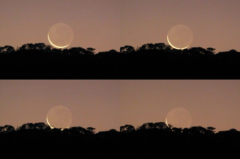 4 views of thin crescent moon with earthshine.