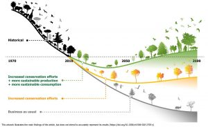 An illustration showing that mitigation efforts begun now can alter the downward curve of biodiversity loss and lead to a more sustainable world for humanity.