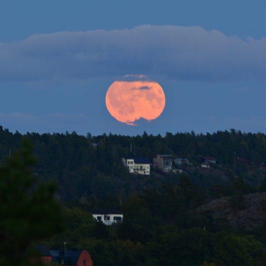 An orange moon, rising.
