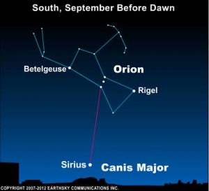 Sky chart of Orion and Sirius.