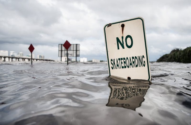 Half-submerged 'no skateboarding' sign.
