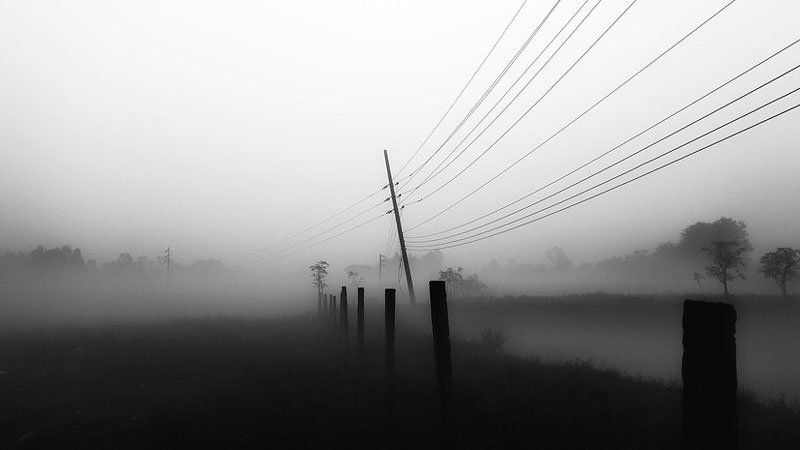 Fence posts and telephone wires disappearing into foggy distance.