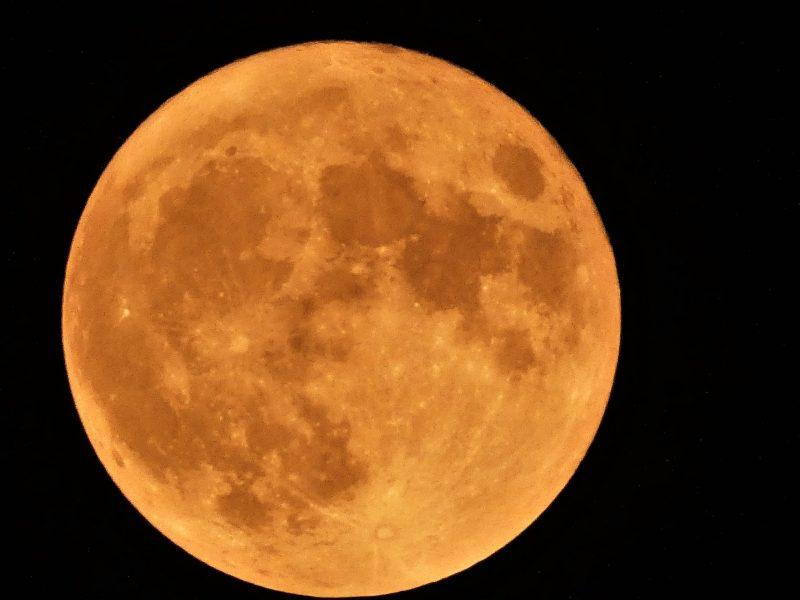 Large full moon a golden orange color.
