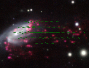 """A galaxy, with green lines drawn in to indicate magnetic fields, appearing like """"tentacles"""" and emphasizing the galaxy's jellyfish-like appearance."""
