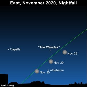 November full moon south of Pleiades cluster and north of the star Aldebaran.