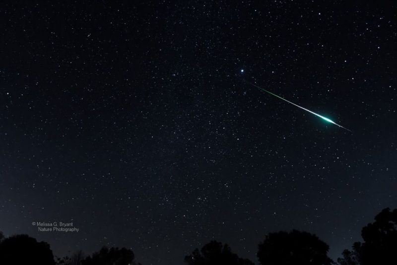 A thin white streak with a bright bulge flashes across the starry sky.