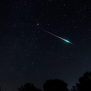 Photos of 2020's Leonid meteor shower - EarthSky