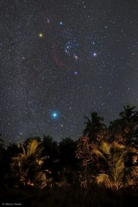 Orion over Gir National Park in India.
