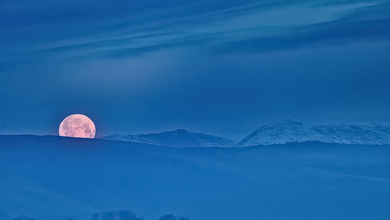 Large pink moon about a quarter behind a blue hill in deep blue twilight.