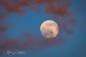 Full moon in a blue sky surrounded by red clouds.
