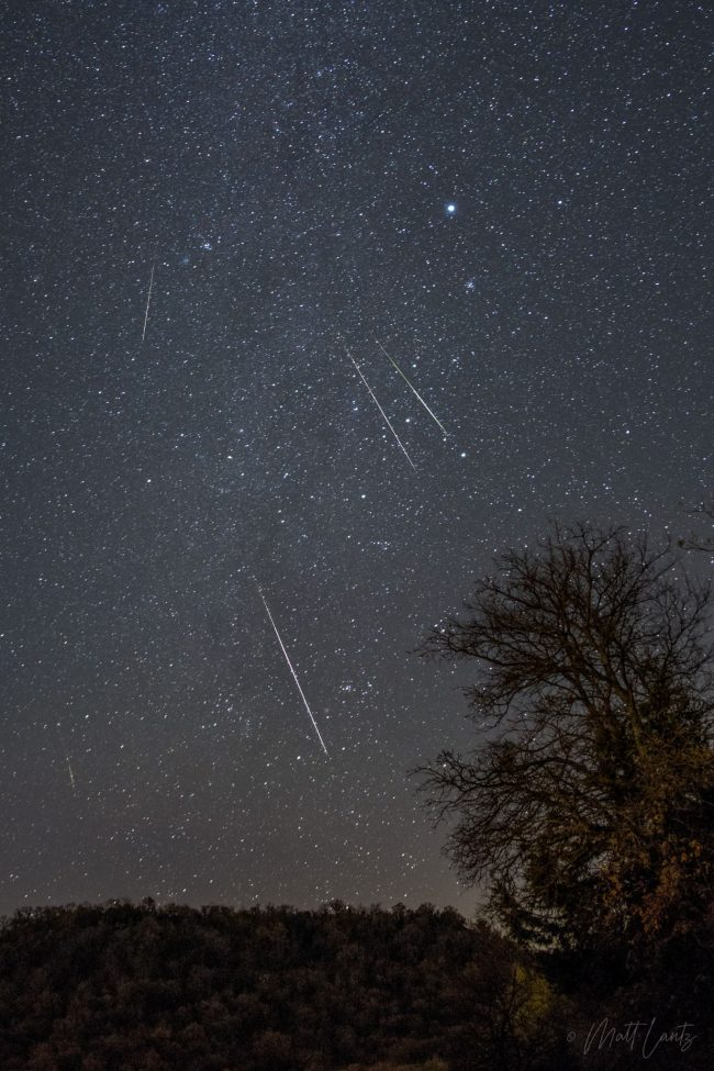 5 meteors streak through a starry sky above a hill with scrubby trees.