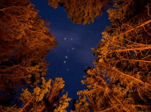 The Big Dipper above a forest.