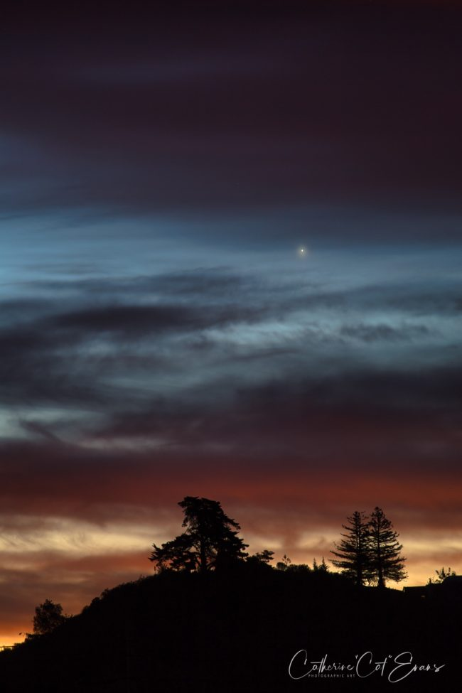 Slate-gray clouds in twilight with one bright dot over silhouetted evergreen trees on hilltop.