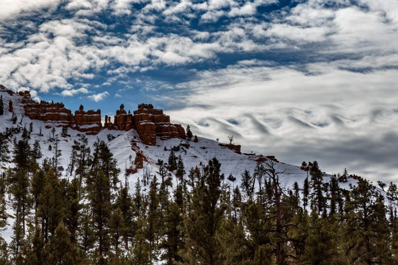 Row of wave-like clouds above snowy mountain dotted with evergreen trees.