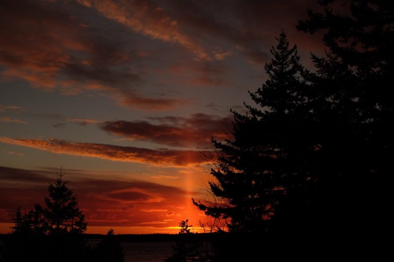 Colorful sky just after sunset, with a horizontal plume of light going upward from the horizon next to dark trees.