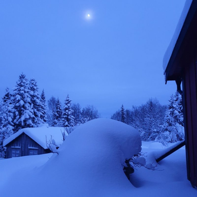 Thick snow covers the landscape and the peaked roof of a small house.