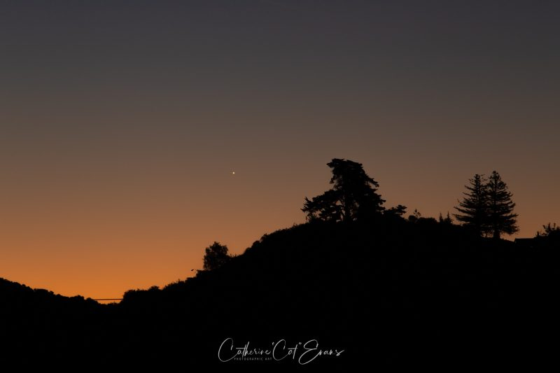 Solitary white dot in orange glow of sunrise over hilltop with silhouetted evergreen trees.