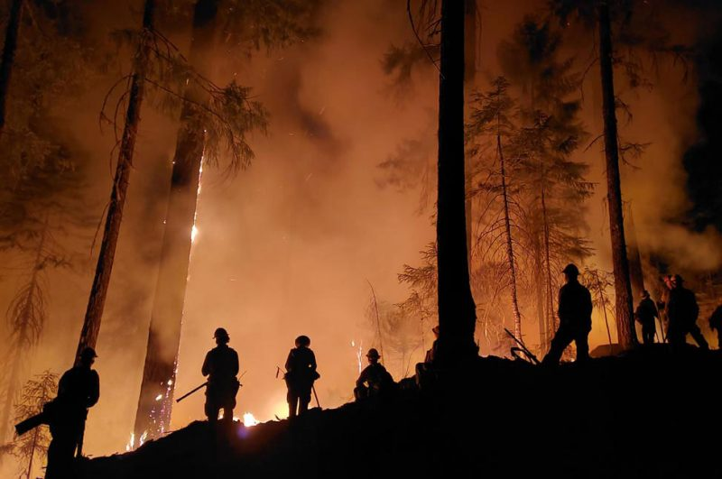 Silhouettes of trees and firefighters against fiery orange background.