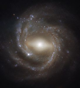Horizontally stretched out bulge - like a bar - with spiral arms around it.