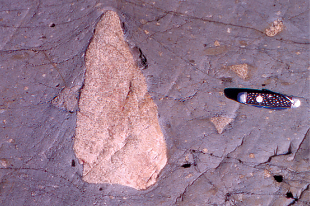 Rough pink triangle embedded in smoother purple rock with a pocket knife for size comparison.