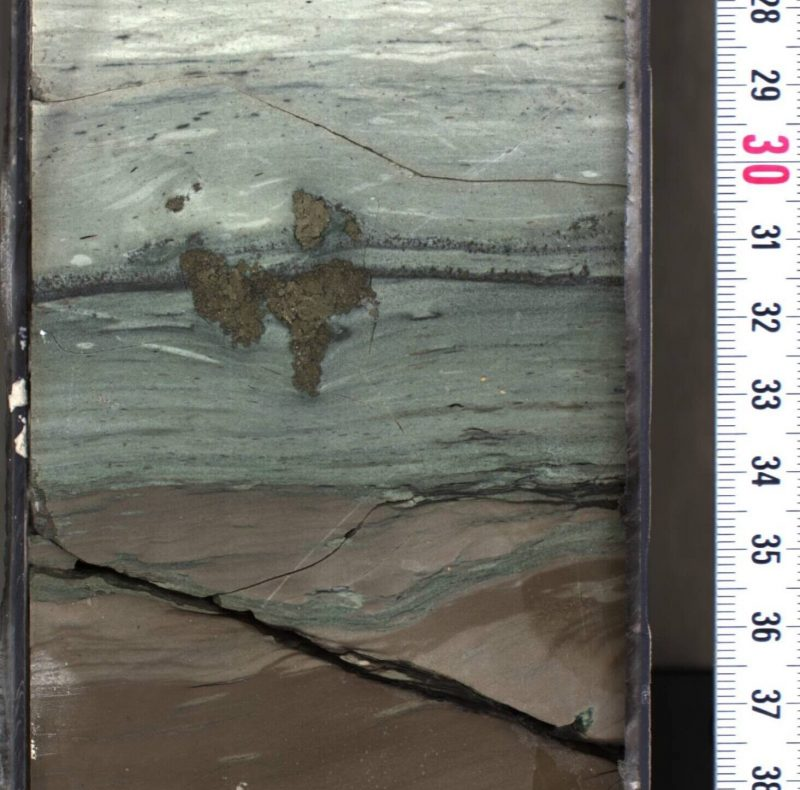 Cross-section of rock sample showing layers with different color and texture.