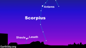 A sky chart showing a constellation shaped like a fishhook.