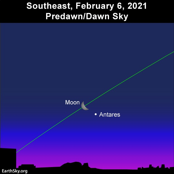 Waning crescent moon and the ruddy star Antares adorn the predawn/dawn sky on February 6, 2021.