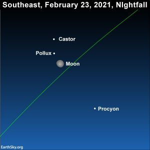 Moon south of the Gemini stars, Castor and Pollux, and north of Procyon, the Little Dog star.