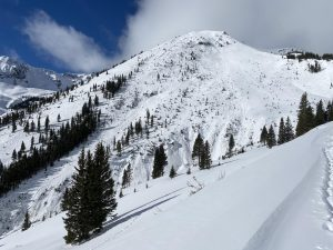 A partly-forested, snow-covered mountain with smooth snow in foreground and rough snow at a distance.