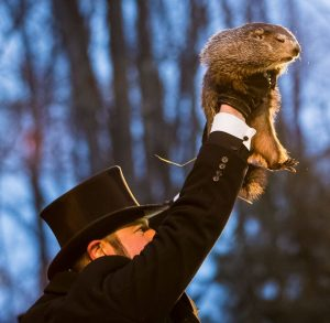 Man in a top hat, holding up a groundhog.
