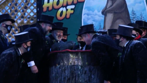 Men in tuxes and top hats at dawn, on a stage, leaning in toward a live groundhog.