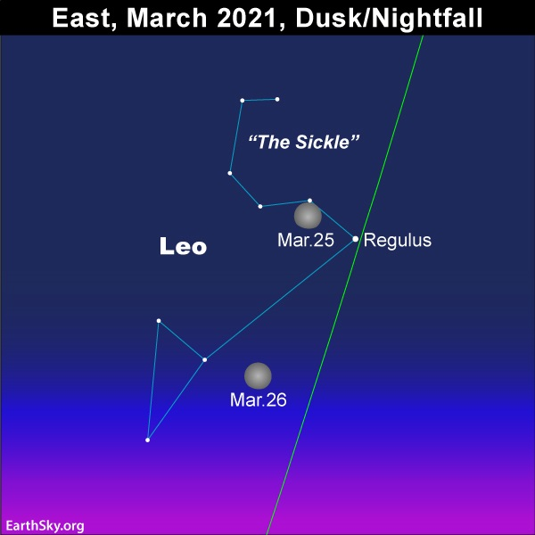 Waxing gibbous moon shines in front of Leo the Lion in the eastern sky as darkness falls March 25 and 26, 2021.