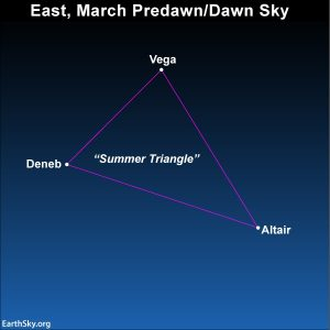 Looking at the Summer Triangle in the eastern prwedawn/dawn sky in March.