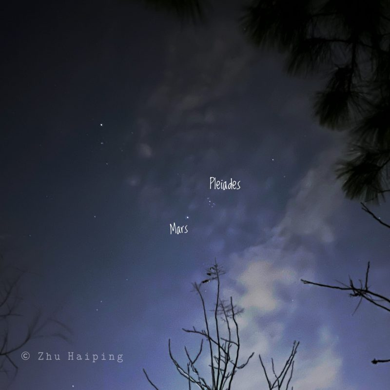 Tree and clouds with sky behind, Mars and Pleiades labeled.
