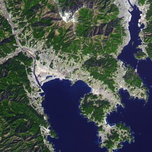 Satellite image of city with white seawall visible.