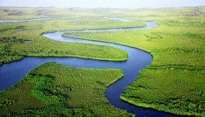 Aerial view of blue river winding through green forested landscape.