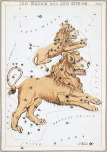 Painting of a large and small lion, representing Leo and Leo Minor, superimposed on stars.