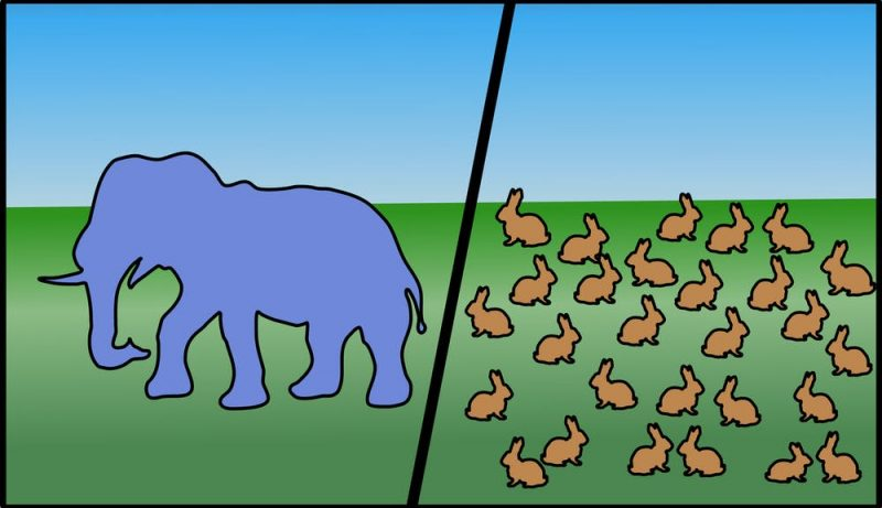 A drawing of one elephant on the left next to dozens of rabbits on the right.