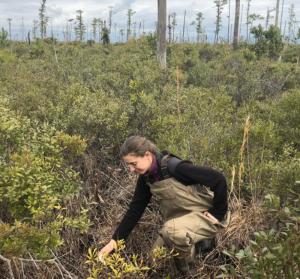 A woman bending down in a scrubby field.