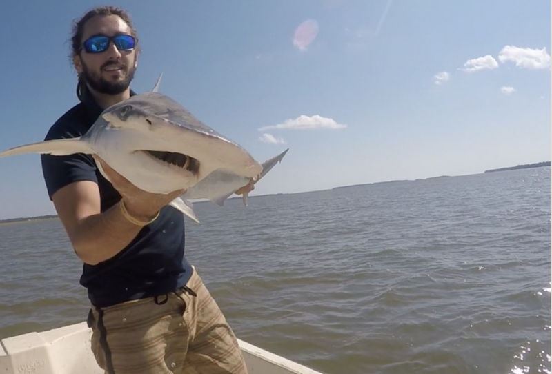 Bearded man on a boat out in the ocean, holding up a small shark.