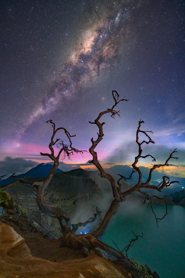 Claw-like dead trees in foreground of colorful sky with Milky Way beyond low mountains.