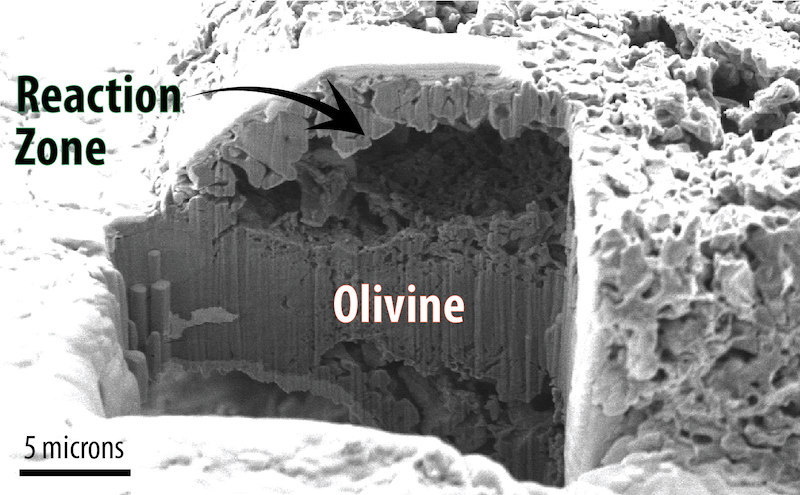 Microscopic rock labeled Olivine with large cavity labeled Reaction Zone.