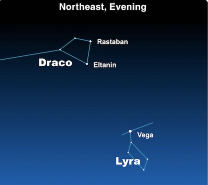 Star chart showing Rastaban and Eltanin in the head of Draco the Dragon in relation to bright star Vega.
