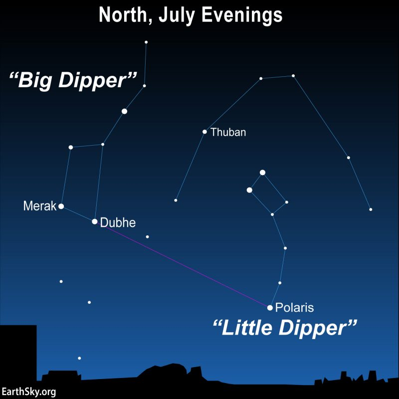 Sky chart, facing north, showing the Big and Little Dippers with Polaris and Thuban.