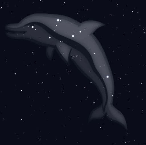 Star chart showing stars of Delphinus, with the shape of a dolphin in gray added on top of them.