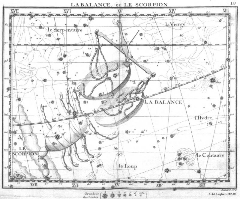 A black and white drawing of a scorpion with stars on an antique star chart.