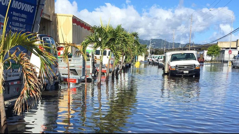 Coastal flooding in Honolulu, with a water-covered street.